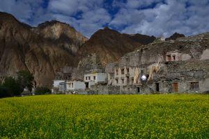 nubra trek inde ladakh Trek au ladakh - / www.pasquedescollant.com