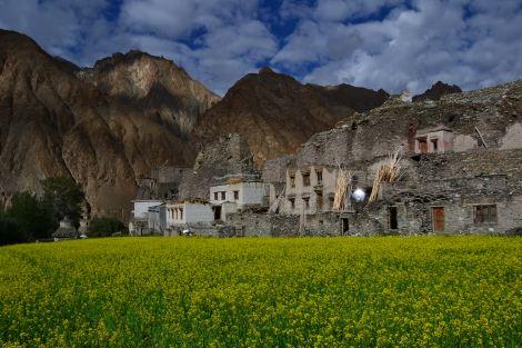 nubra trek inde ladakh
